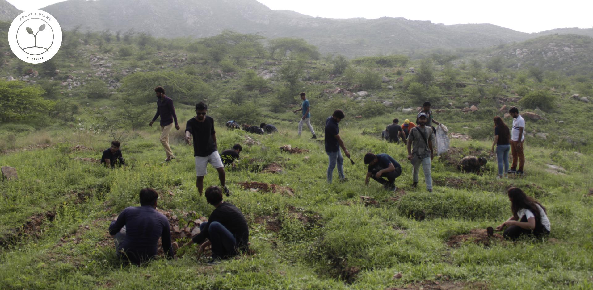 Jaipur-Plantation-CSR-2.jpg